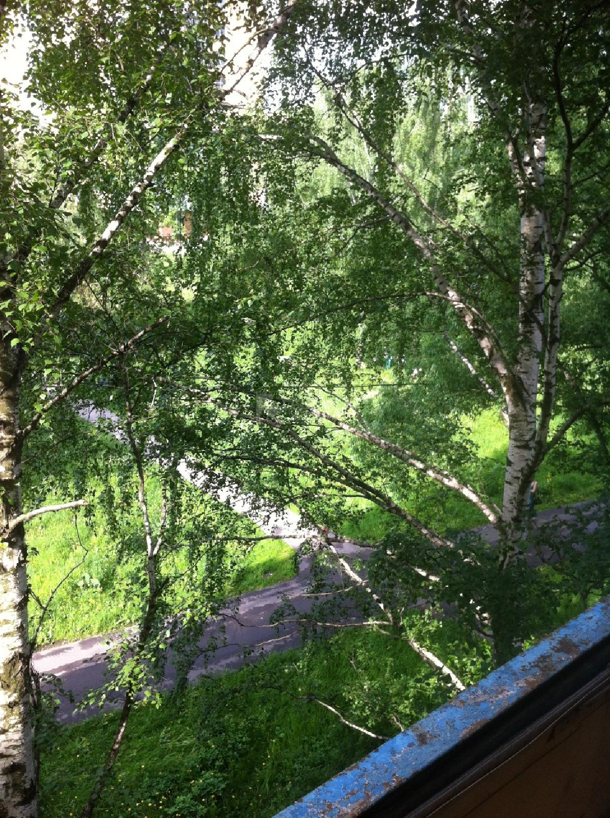 Фото №13 - 2-комнатная квартира, Москва, Черского проезд 9, метро Бибирево